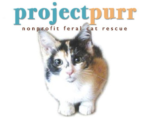project_purr