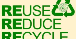 Reduce first, then reuse, recycle